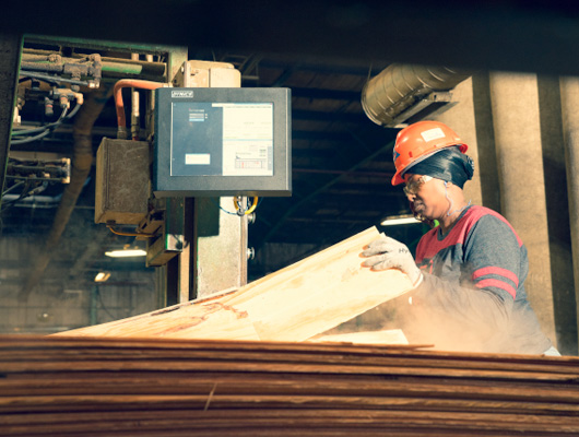 Georgia-Pacific is investing $70 million for upgrades to its plywood and lumber operations in the community.