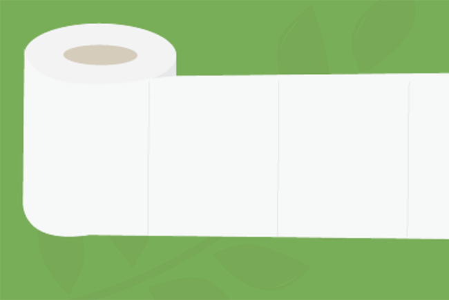Toilet Paper & Forests: Wiping Out Misconceptions